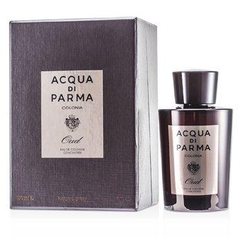Acqua Di Parma Colonia Oud Eau De Cologne Concentree Spray  180ml/6oz