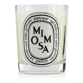 Diptyque Lumânare Parfumată - Mimosa  190g/6.5oz