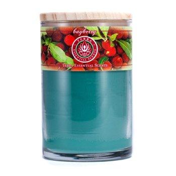 Terra Essential Scents Świeca zapachowa Świeca zapachowa Hand-Poured Soy Candle - Bayberry  12oz