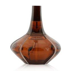 Calvin Klein Secret Obsession Eau De Parfum Spray  100ml/3.4oz